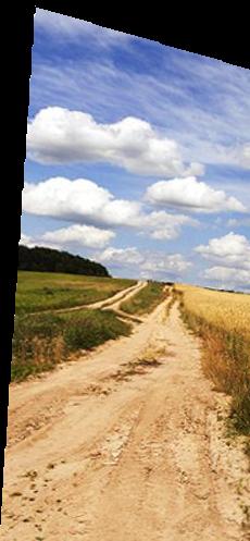 Сайт за земеделски земи на Агриада ЕООД - блог