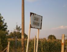 Купува ниви в Даскал Атанасово