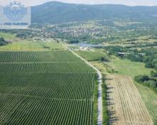 Агриада купува земеделска земя в Отец Паисиево