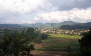 Агриада купува земеделска земя в Кости