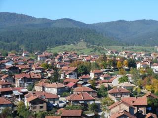 Купува земеделска земя в Ракитово